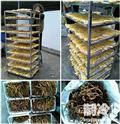 如何采用空气能高温热泵,烘干竹笋?