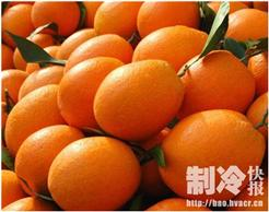 橙子冷库工程需要符合什么储存环境?