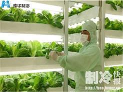 蔬菜冷库安装用于保鲜蔬菜的原理是什么?