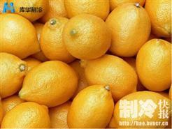 水果保鲜柠檬冷库建造案例