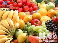 果蔬冷库建造 果蔬保鲜需要做什么