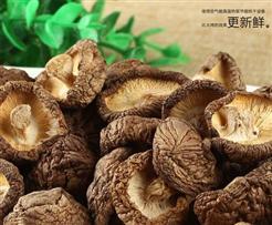 如何用空气能热泵烘烤出美味的香菇?