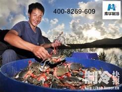 冷库建造安装新鲜记:进京开拓市场的三门海鲜