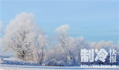 """2018被指是空调""""冷""""年?美的拉拢上下游求破"""