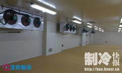 800平米的果蔬高温冷库建造
